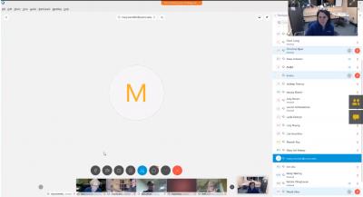 screen capture of WebEx Webinar